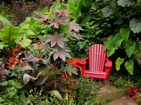 Steve's red chair