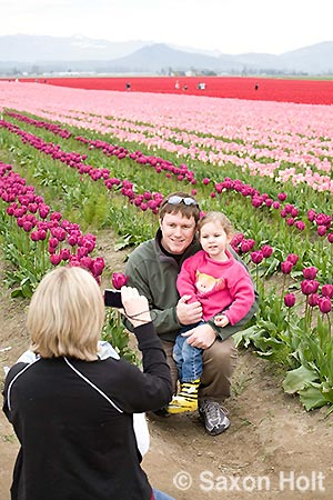 tulip field family looking at horizon