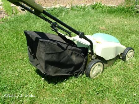 Neuton mower with bag
