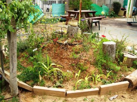 school-garden-resized-raised-bed
