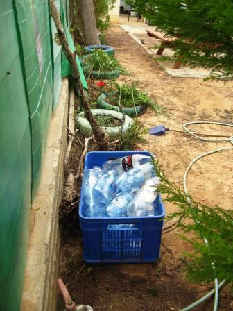 school-gardens-resized-recyclabe-bottles-and-tire-gardens-2