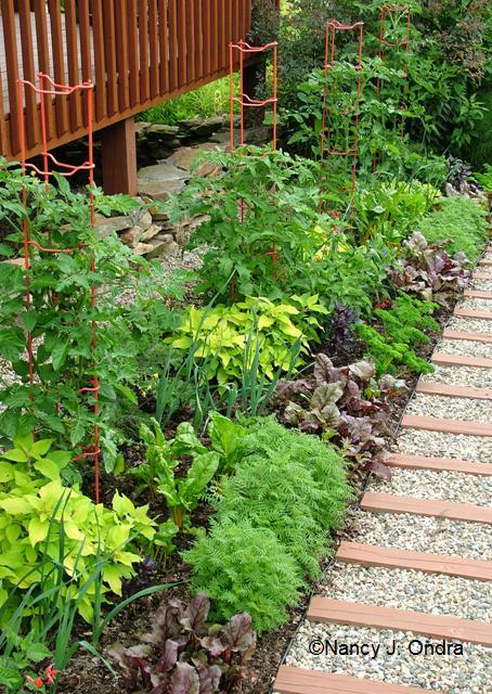 foundation-border-with-veggies-june-25-07