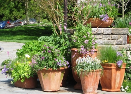chanticleer-50909-grouping-of-spring-containers-at-entryway-resized
