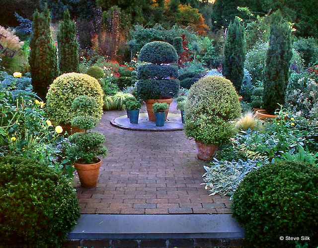WH potted terrace
