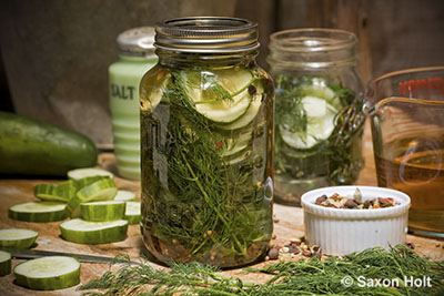 cucumber summer pickles