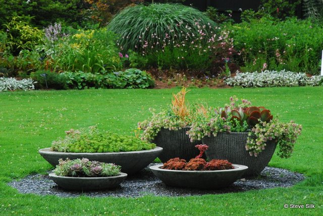 lovely garden ideas to hide septic tank perfect raised garden over septic field the background on backgrounds - Garden Ideas To Hide Septic Tank