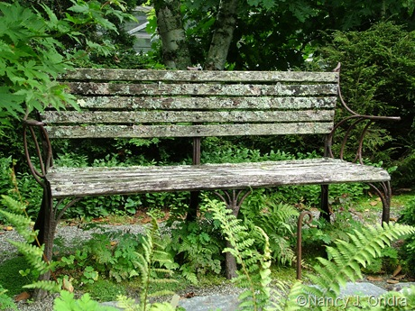 Rustic bench at Cady's Falls Nursery