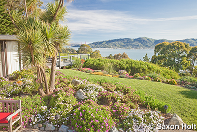 garden with view of San Francisco