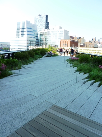 Urban Native Prairie Garden-The High Line