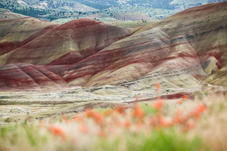 Painted Hills_9521