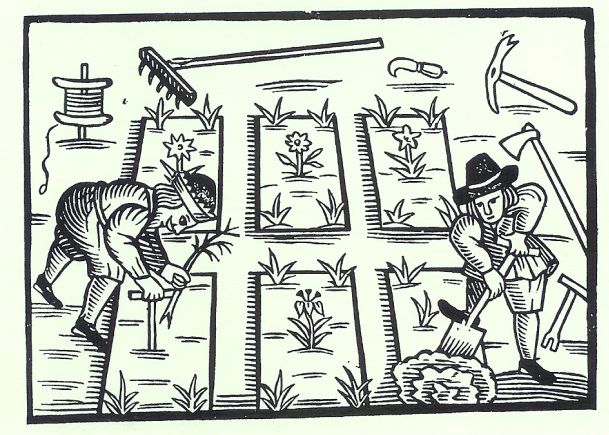 Medieval peasants worked hard for low yields. Do we really want to go back to their heirlooms?