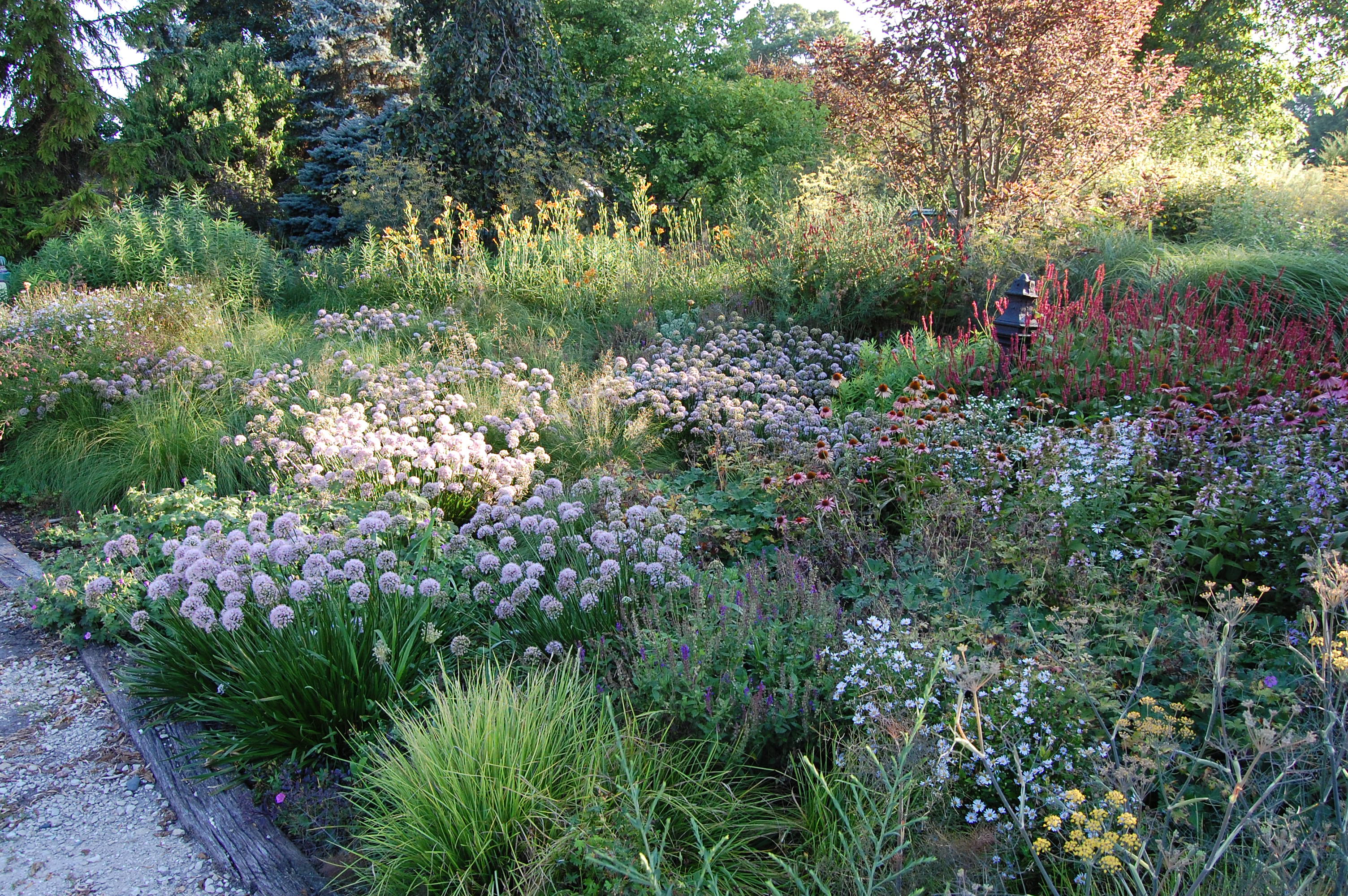 NorthWind Perennials in southern Wisconsin shows an original approach to perennial planting which can work on a variety of scales