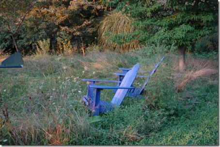 blue chair-1s in August