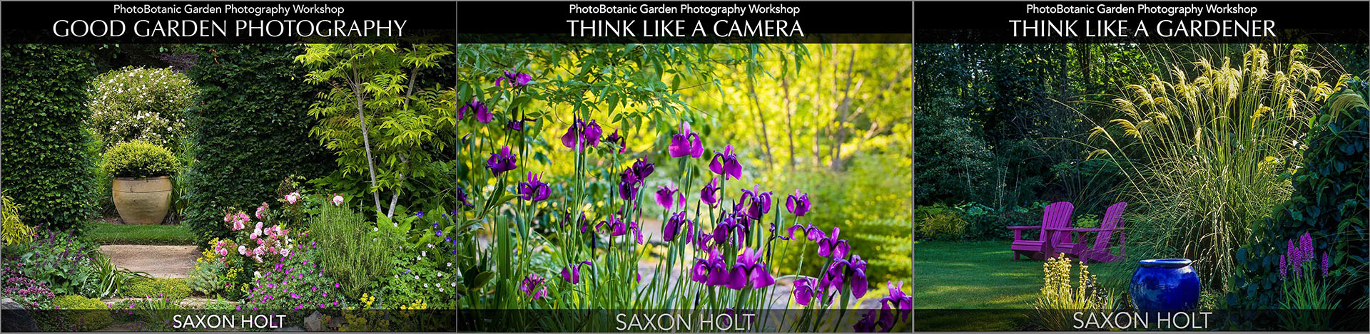 PhotoBotanic Garden Photography Workshop Ebooks