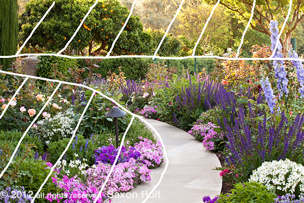 shapes of path leading through garden