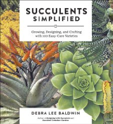 619dq17hihL._SX225_ -Succulents Simplified