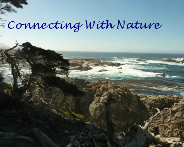 2013-10-04-Carmel-Pacific-Ocean-re-sized-600x480 - with quote