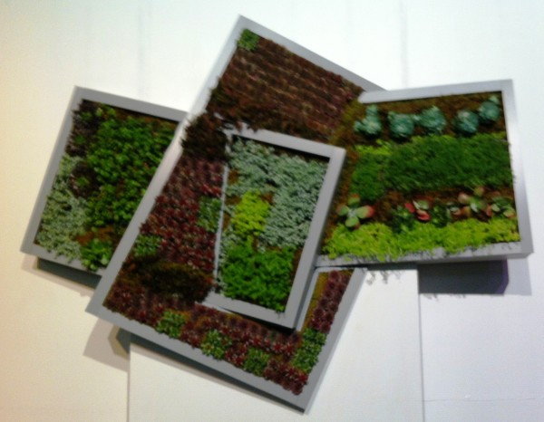 High School Interpretation of Vertical Gardens