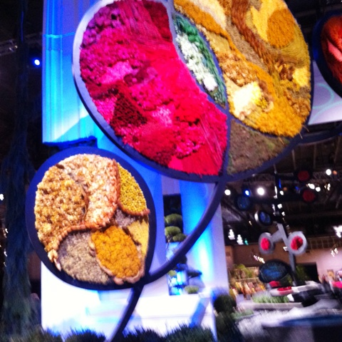 Philly Flower Show - whimsy and color
