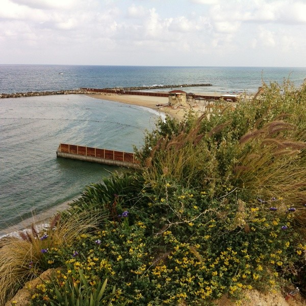 Edge of park overlooking Mediterranean Sea
