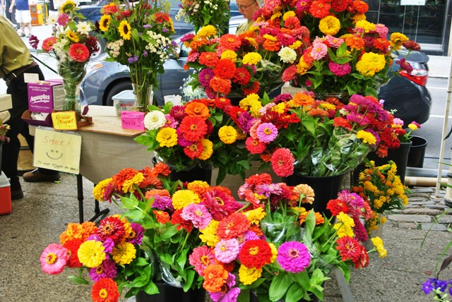 Zinnias at outdoor market