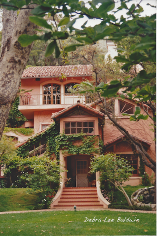 Pink house1