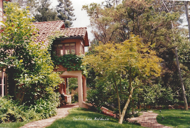 Pink house2