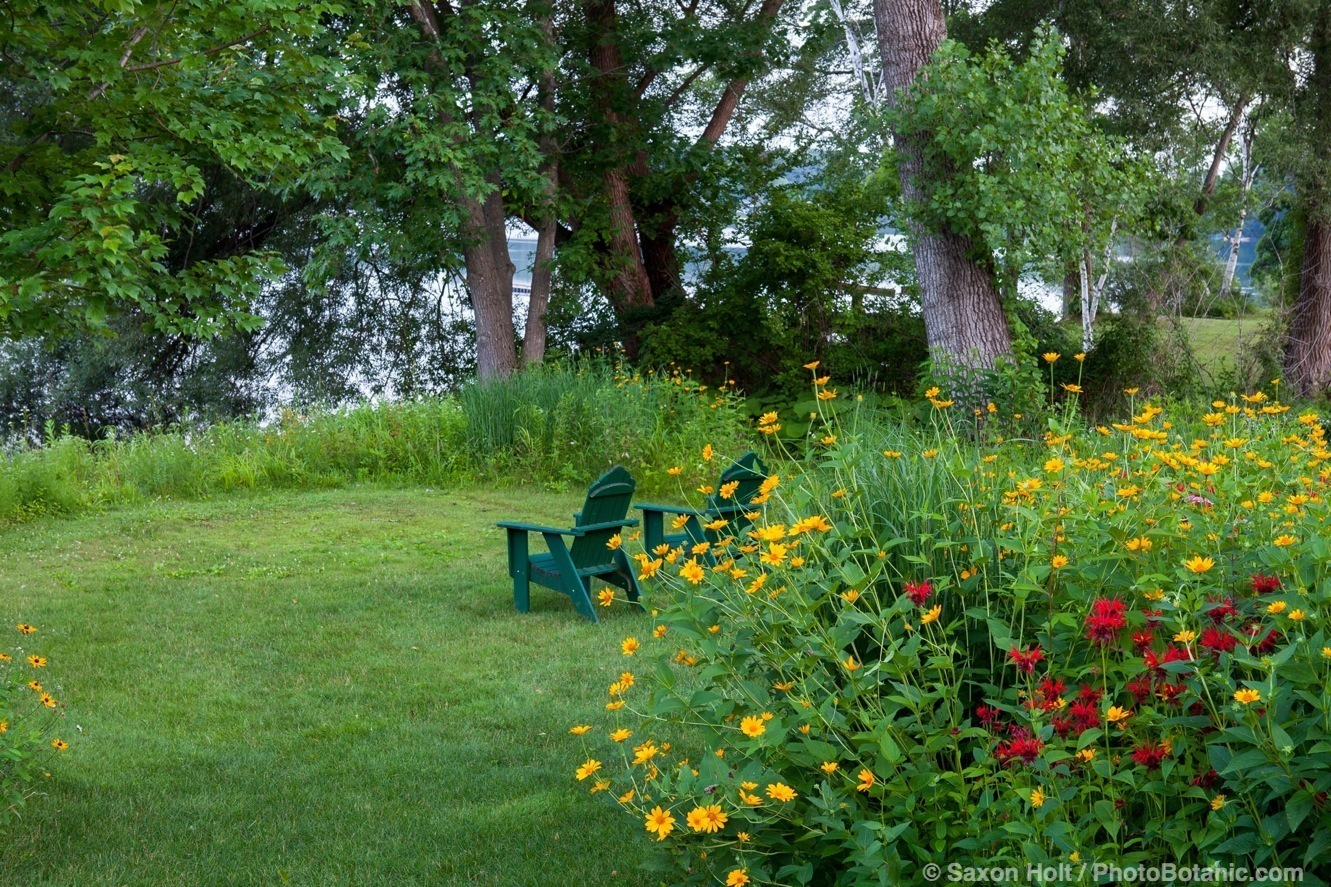 Wild Backyard Garden : But the stronger photo is looking over the flowers, past the chairs to