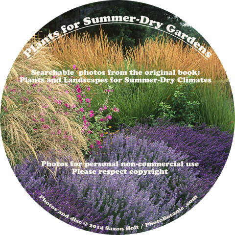 holt-summer-dry disc product label_600