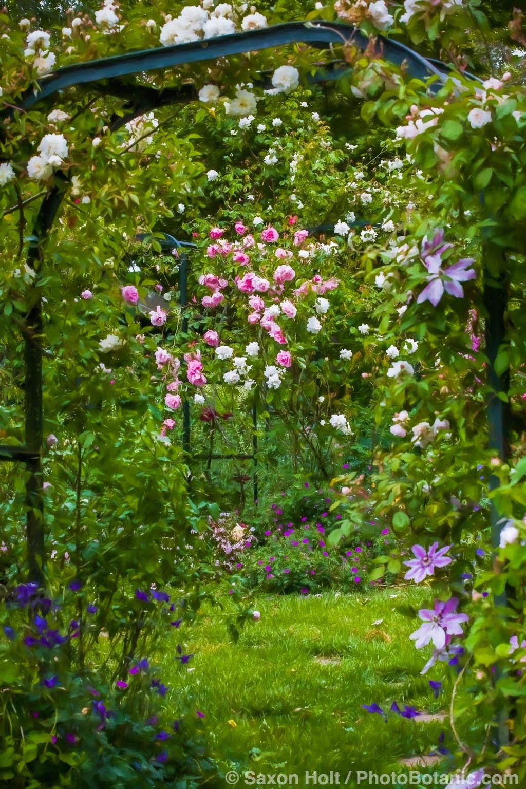 Country Garden Room with Old Roses