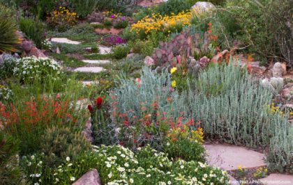 Photo Contest at High Country Gardens