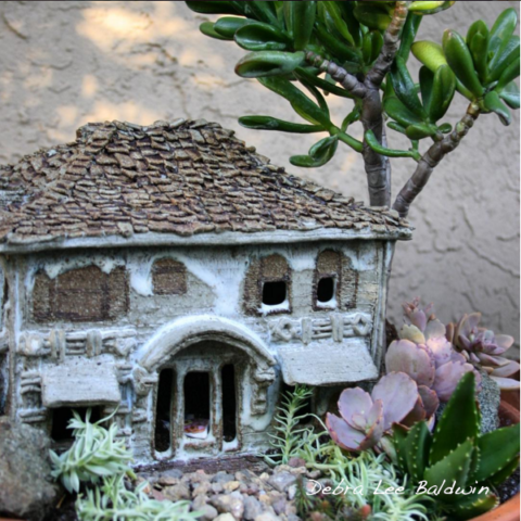 Succulents and haunted ceramic house